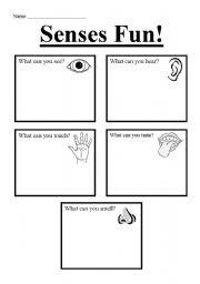 English Worksheets: Senses Fun