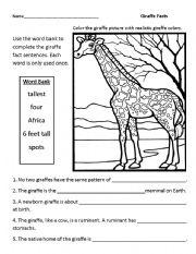 English Worksheets: Giraffe Facts