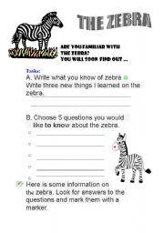 English Worksheets: zebra