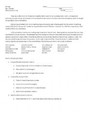 English Worksheets: DNA lab