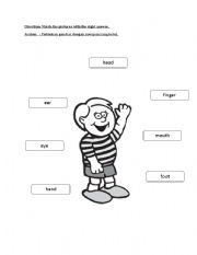English Worksheets: Simple Bodypart