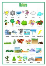 English worksheets: The Environment worksheets, page 24