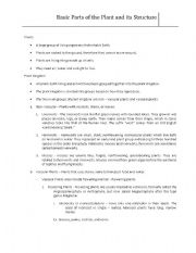 English Worksheet: Parts of the plants and its structure