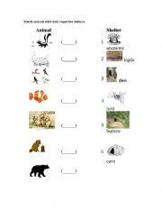 English Worksheets: animal shelters K7