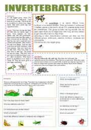 now advertise here vocabulary worksheets the animals invertebrates ...