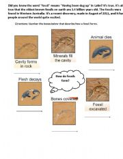 English Worksheets: Steps to Form a Fossil