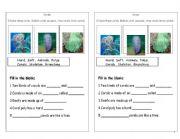 English Worksheets: coral