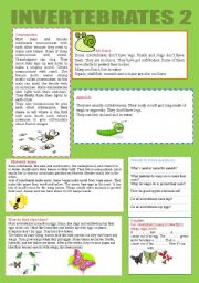 English Worksheet: INVERTEBRATES 2