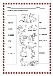 math worksheet : english teaching worksheets the animals : Animals And Their Babies Worksheets For Kindergarten