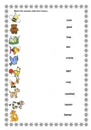 English Worksheet: Animals and their homes