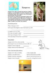 English Worksheets: Kangaroo