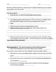 planning org essay