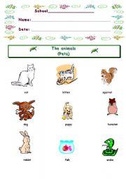 English Worksheets: PETS INFORMATIONSHEET
