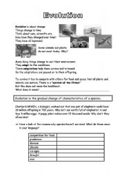 English Worksheets: Evolution
