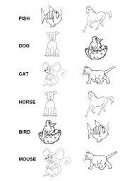 English Worksheets: What animal...?