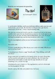 English Worksheets: The Bird
