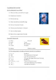 English Worksheets: The Circulatory System