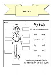 English Worksheets: Body Parts