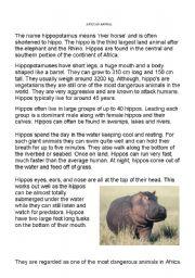English Worksheet: Report writing - hippo