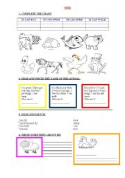 English Worksheet: PETS AND FARM ANIMALS