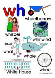 English Worksheet: Wh What teaching resources: 7 worksheets