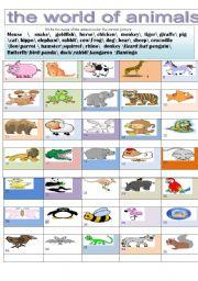 English Worksheets: the world of animals