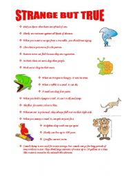 English Worksheet: strange but true facts about animals