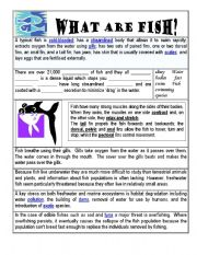 English Worksheets: Comprehension Activity - Fish