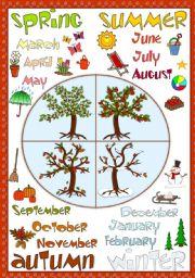 English Worksheet: Seasons - POSTER