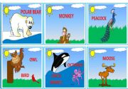 English Worksheets: --- WILD ANIMALS --- FLASHCARDS 1/3