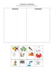 English worksheet: Vertebrate of Invertebrate?