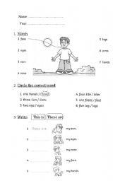 English Worksheets: Body exercises