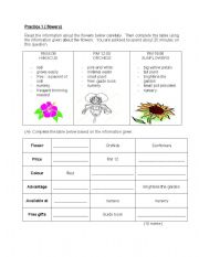 English Worksheet: English: Information Transfer