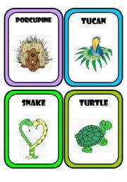 English Worksheets: Animals * Part 3