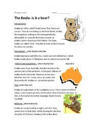 English Worksheets: the koala-is it a bear
