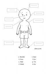 English Worksheets: calliou exercise