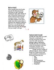 English Worksheets: Fossils Guide