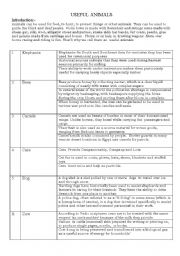 English Worksheets: Uses of animals