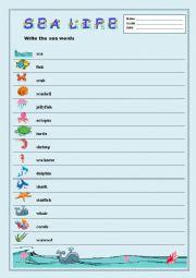 Sea Life/Spelling