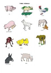 English worksheets: the animals worksheets, page 459