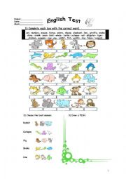 English Worksheet: ANIMALS TEST(3 pages with key)