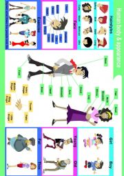 English Worksheet: Human body parts & appearance