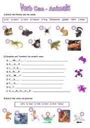 English Worksheet: Verb Can - Animals