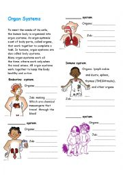 Printables Organ Systems Worksheet printables organ systems worksheet safarmediapps worksheets english systems