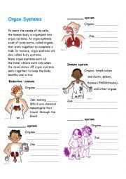 Organ systems - ESL worksheet by diegokiller