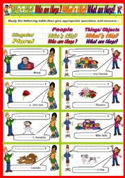 English Worksheet: Who is who are  What is what are ?