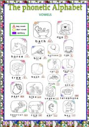 English Worksheet: The phonetic alphabet poster ( VOWELS)