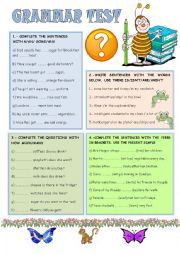 English Worksheet: GRAMMAR TEST FOR BEGINNERS