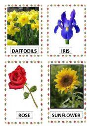 FLOWERS PART-1