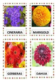English Worksheet: FLOWERS PART-4